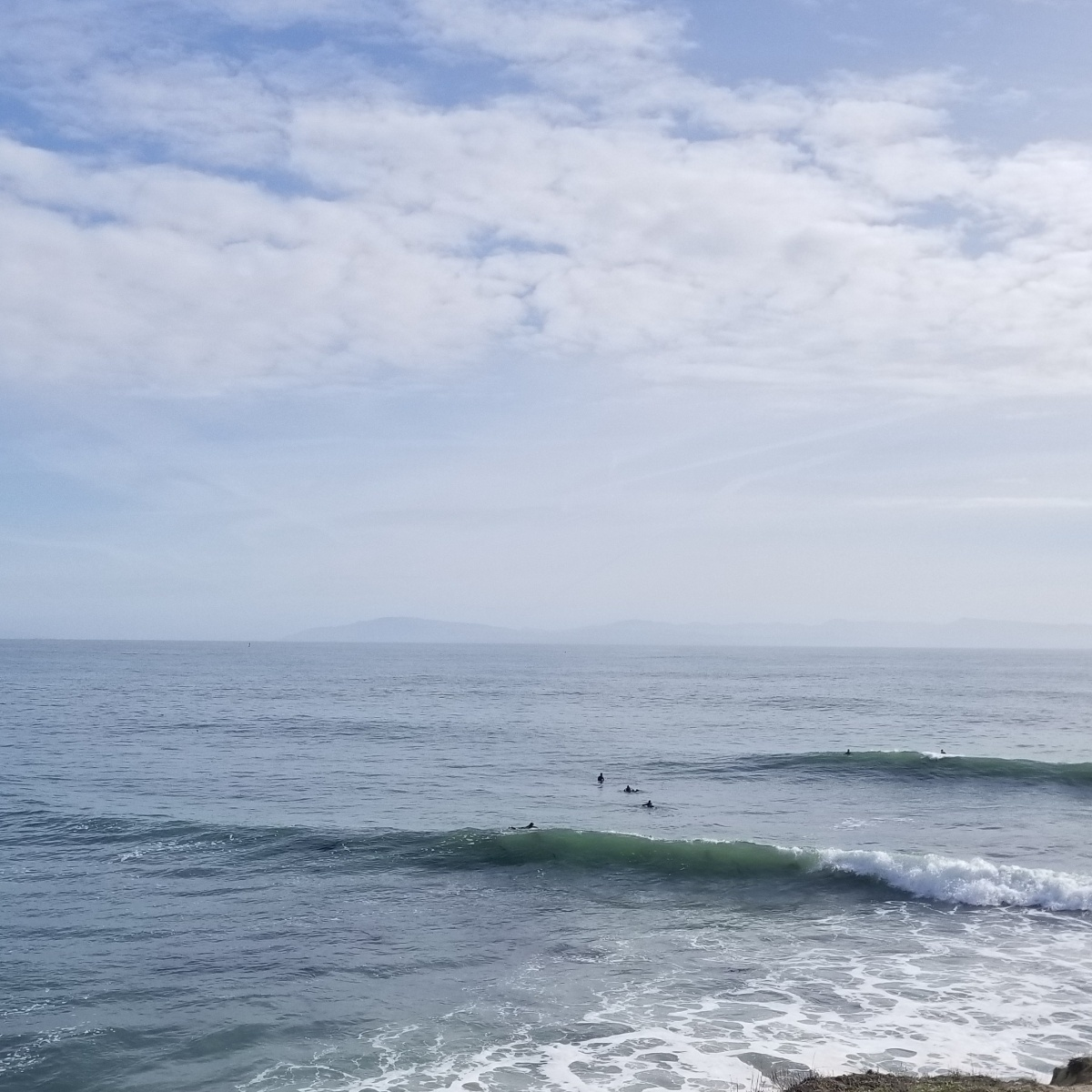 Surfing on a Sunday with Elephant Seals